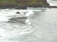 Teneriffa2009_021